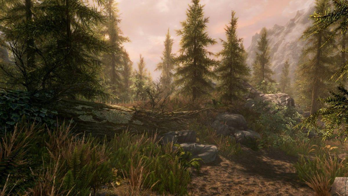 Elder Scrolls V Skyrim Special Edition Kuva 4
