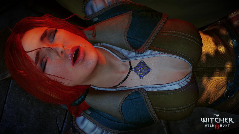 Witcher3 En Screenshot The Witcher 3 Wild Hunt Screenshot 25 1920x1080 1425653247