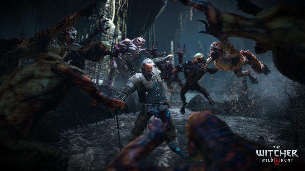 Witcher3 En Screenshot The Witcher 3 Wild Hunt Screenshot 26 1920x1080 1425653248